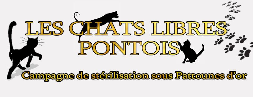 LES CHATS LIBRES PONTOIS 33030010