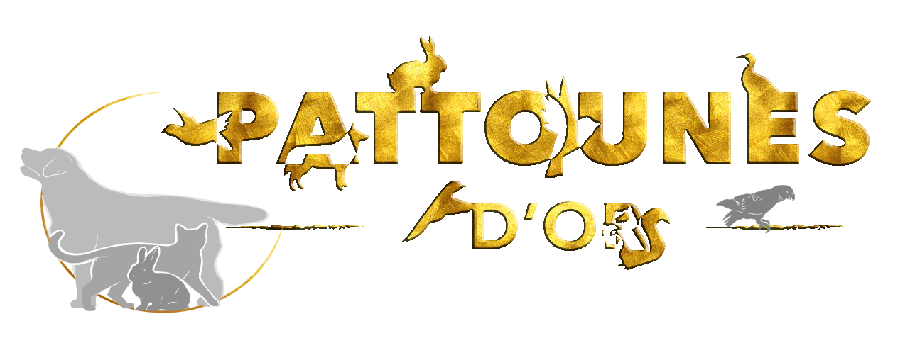 Pattounes D' Or