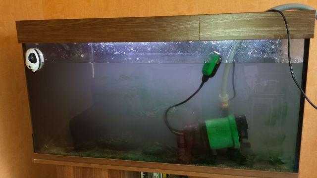 Une usine à gaz, façon aquarium... 2017-010