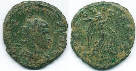 Bronze radié 6535_m10