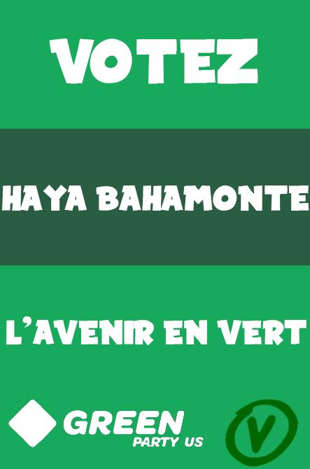 ÉLECTIONS PARTIELLES DU CONSEIL MUNICIPAL / Dépôt des candidatures (FERMÉ) Haya12