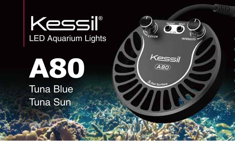 Kessil Light A 80 Tuna Blue 411