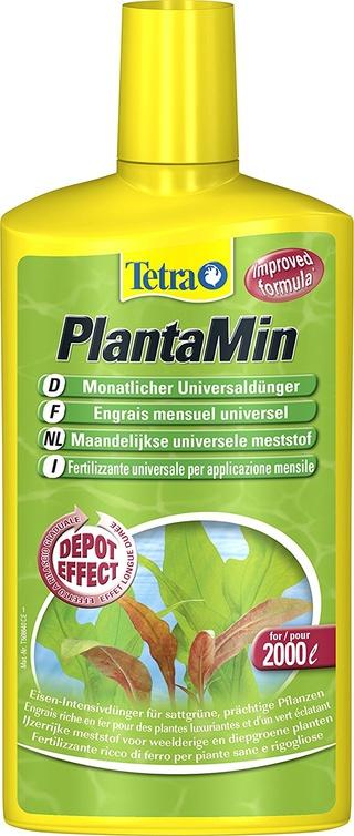 empoter des plantes , astuces? 81w14w11