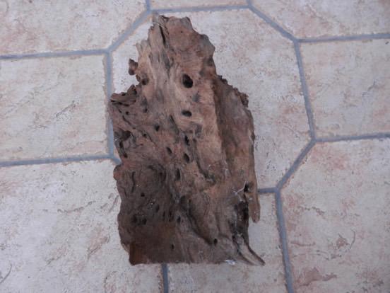 Racines et bois d'ornement 4310