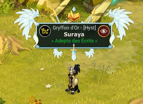 Présentation Suya Suraya10