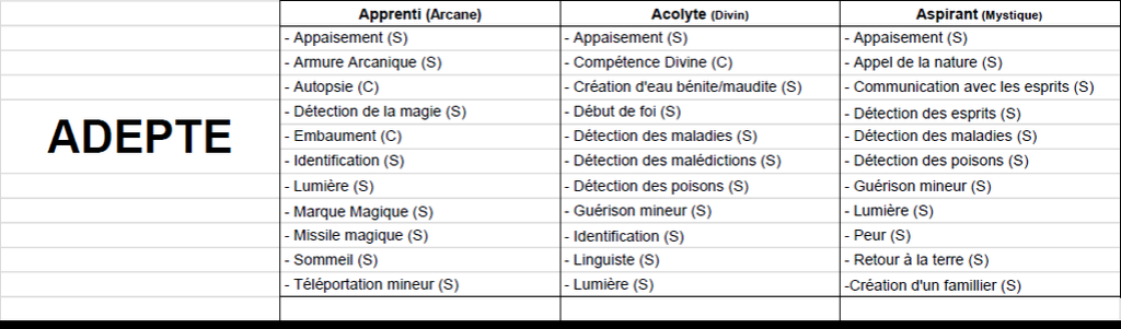 Niv 1 - Aventurier Magie-11
