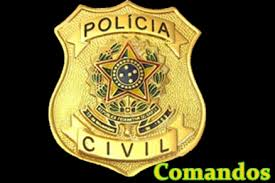 Manual Policia Civil 410