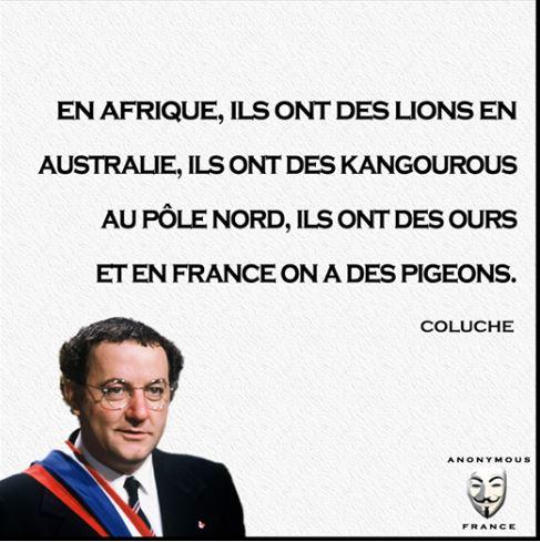 HUMOUR - Citations Coluche Captur30