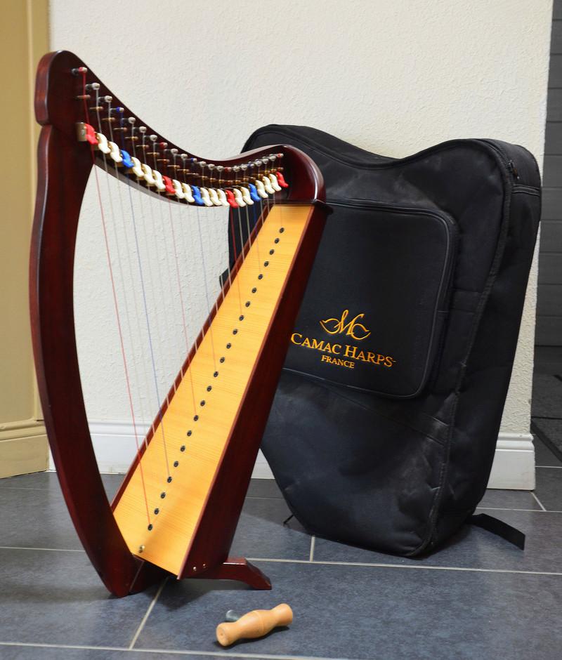 Harpe Bardic 22 cordes et accessoires - 850€ Dsc_0212