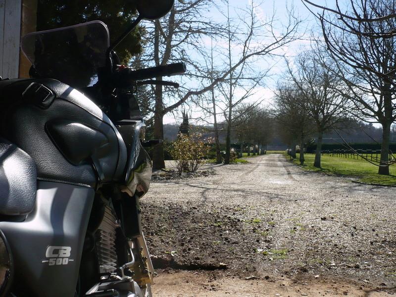 New Owner Near Bordeaux Bike_r11
