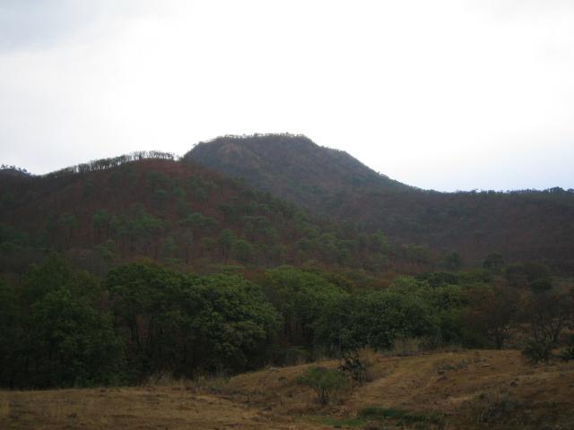 El Cerro del Vigia  Vigia10