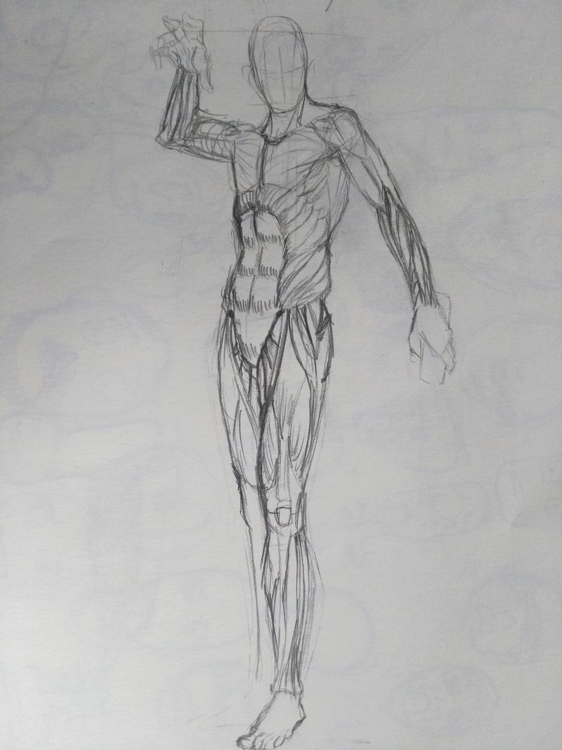 Trainings/Study - Page 2 Img_2076