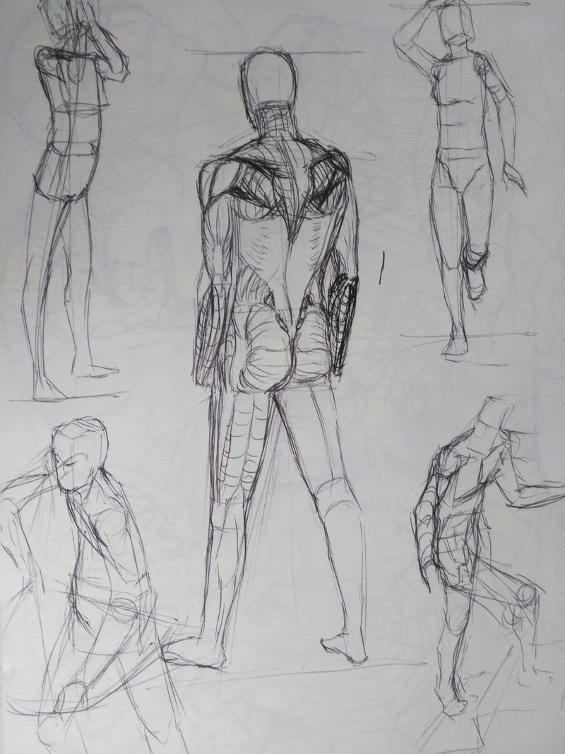 Trainings/Study - Page 2 Img_2082