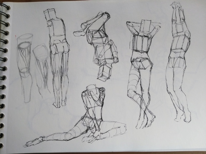 Trainings/Study - Page 2 Img_2100