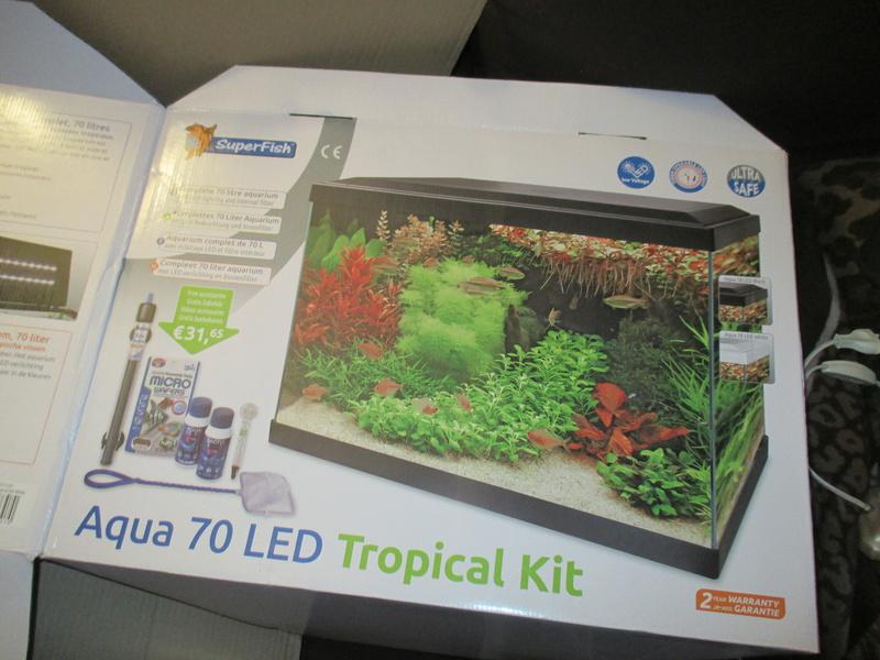 Démarrage d'aquarium de 60l, algues ! Conseils ? 2018-017