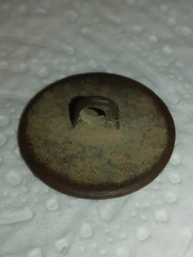 Botón del 17º Rgto. de Infantería de Línea 1827 - 1840 Img_2014