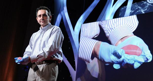 Órganos impresos en 3D, el futuro de los trasplantes Articl12