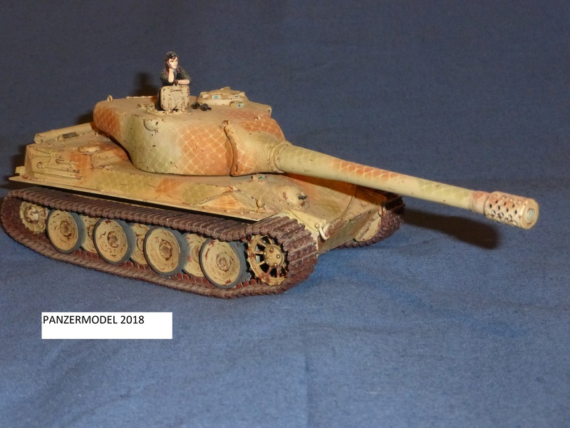 panzer 46 P1010420