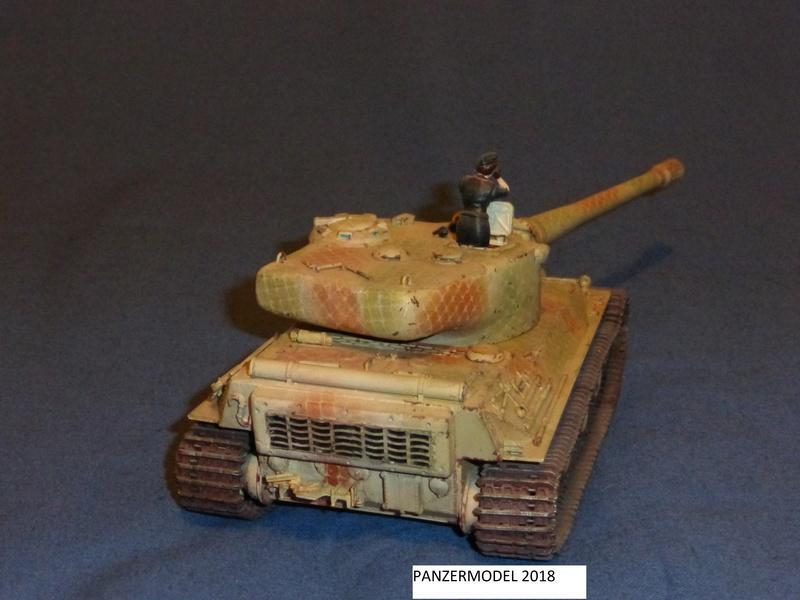 panzer 46 P1010421
