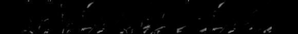 Cartelera CCWF Evolution 07/03/2018 Post-014