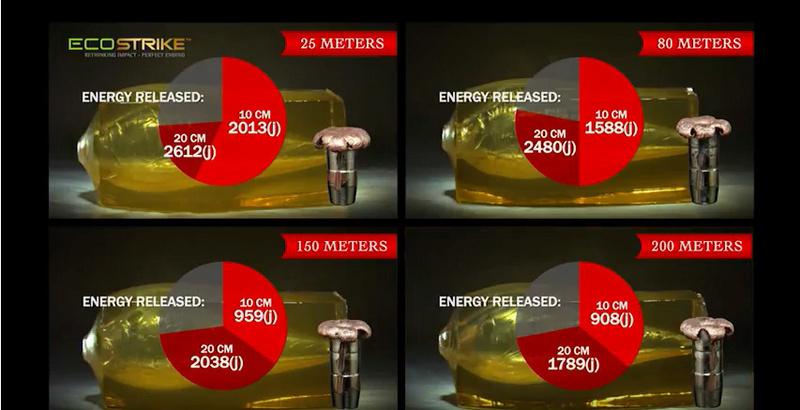 """Réflexion sur les """"calibres"""" et leur efficacité  - Page 13 Ecostr12"""