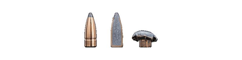 pas de rayures des Armes Blaser  Gamehe10