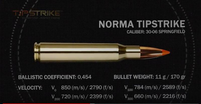 """Réflexion sur les """"calibres"""" et leur efficacité  - Page 13 Tipstr10"""
