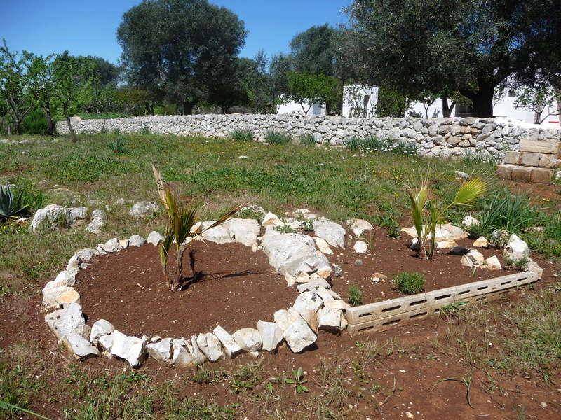 Aus einer Wüste entsteht ein Exotengarten 21_04_10
