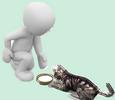 Images animées et gif, textes animées ou non Chat1110