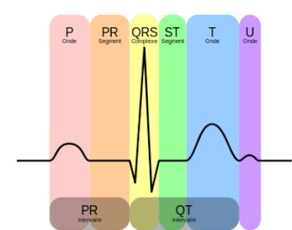 COLLECTION  de 7 LIVRES POUR UNE MEILLEURE INTERPRETATION D 'ECG  Ghghgh11