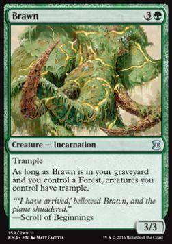 recherche wesley Brawn10