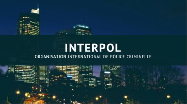 Interp11