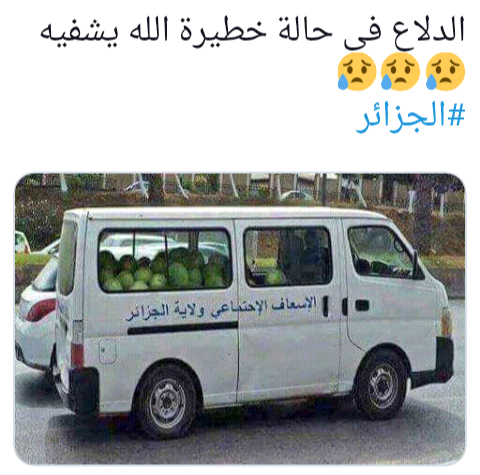 يا قوم الدلاع (البطيخ)في حالة صعبة Screen17