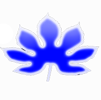 Plant Network Fr Forum