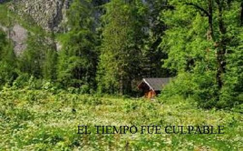 EL TIEMPO FUE CULPABLE  (relato a dos manos) El_tie10