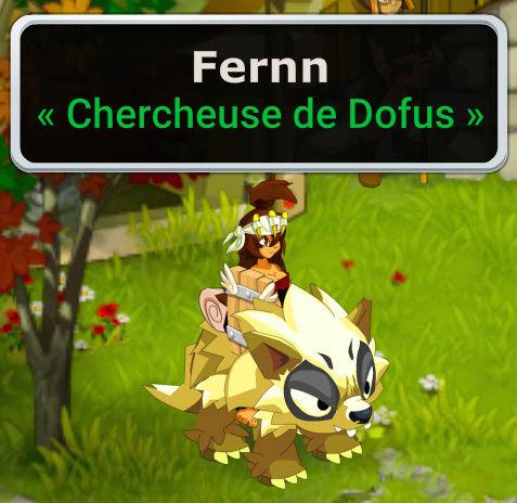 Candidature : Fernn Captur10