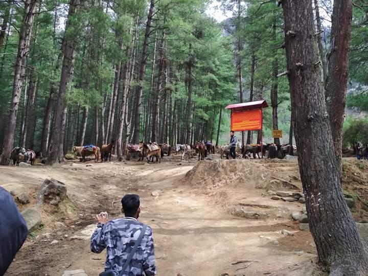 বাংলাদেশ ভুটান ভ্রমন গাইড Bangladesh Bhutan Tour Guide Fb_im221