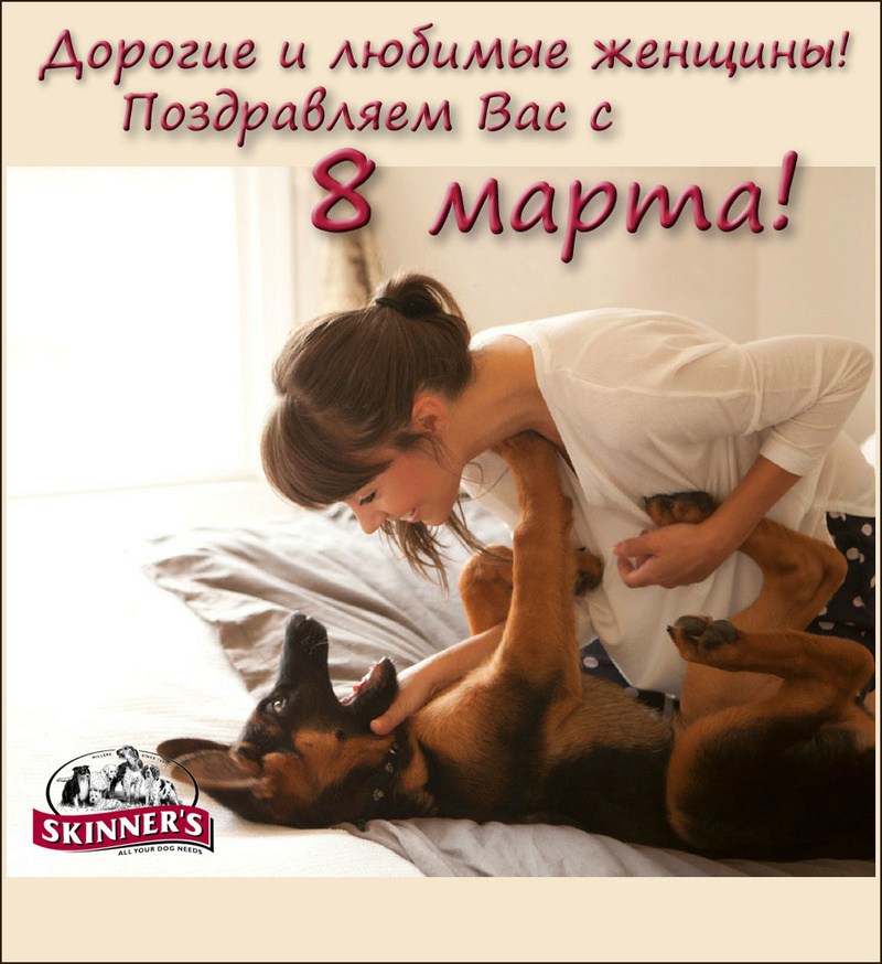 Фермерский сухой корм для рабочих и служебных собак Skinners 8_ei10