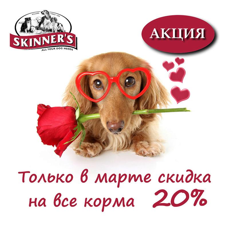 Фермерский сухой корм для рабочих и служебных собак Skinners Ioae_e10