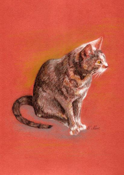 Sanguine, pastel et Cie Kitty210
