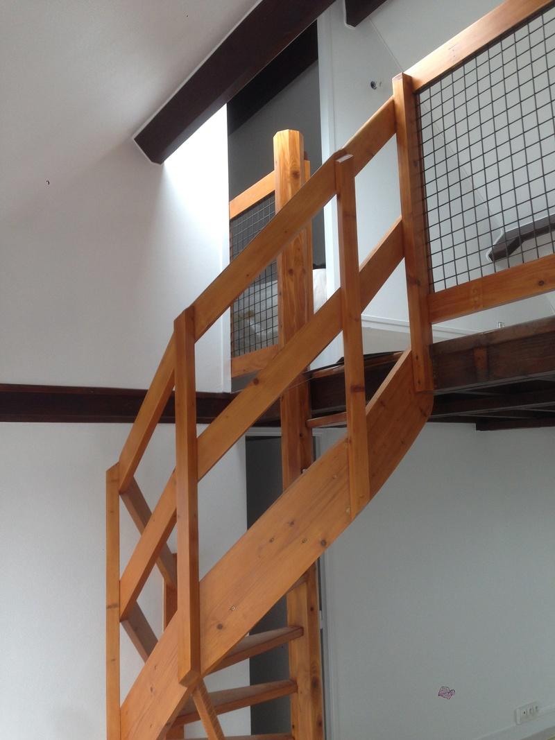 Une idée de couleur pour mes escaliers?! Img_1710