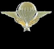 Renouvellement des avions des forces aéroportées Brevet10