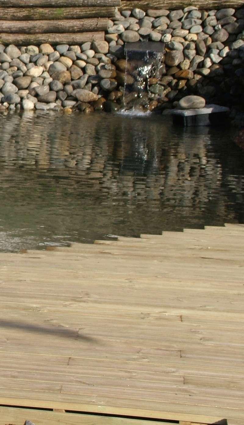 premier bassin Fullsi13