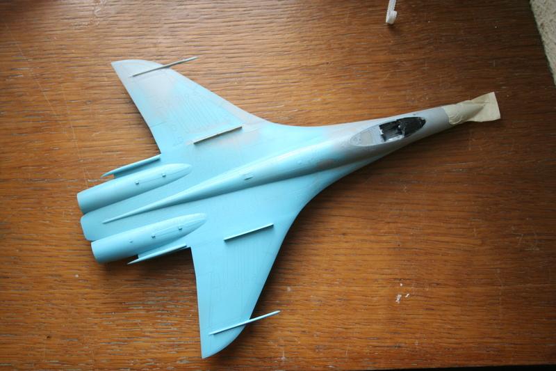 Sukhoi T10 (MODELVIST 1/72) - Page 2 Img_2931