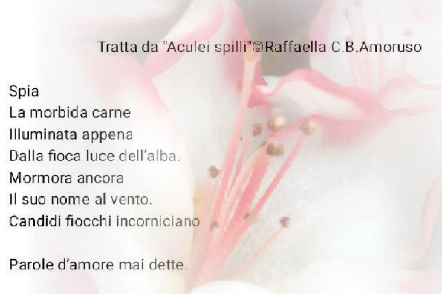 benvenuta Raffaella - Pagina 13 Photo_15