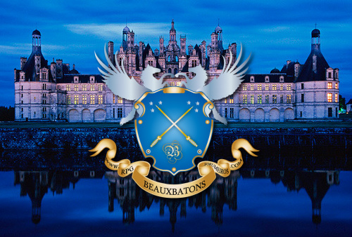 Beauxbatons Academy of Magic 13362510