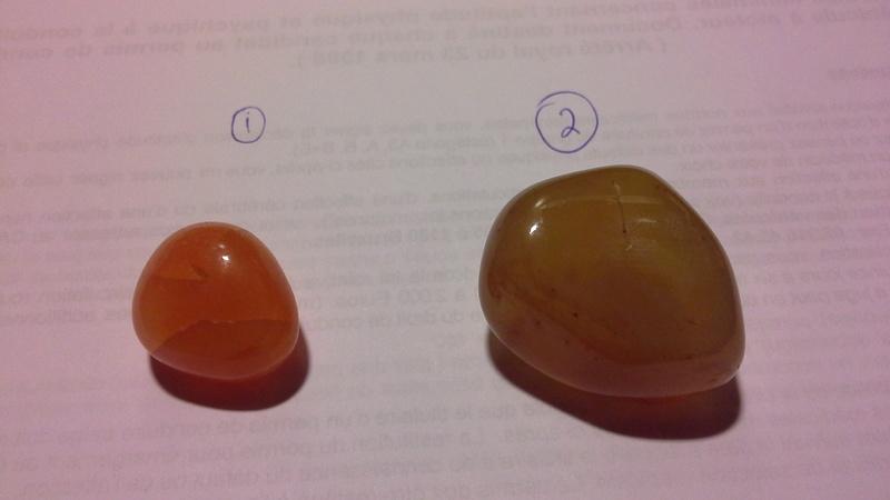 Deux cornalines ? Cornal10