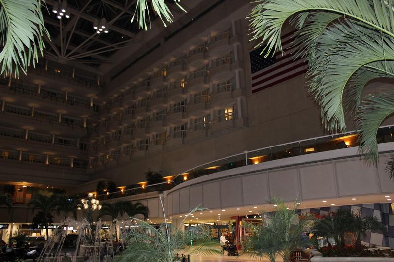 Mariage thème Disney + Voyage de Noces WDW + USO + IOA + Keys + Everglades + Miami Img_1218