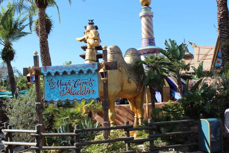 Mariage thème Disney + Voyage de Noces WDW + USO + IOA + Keys + Everglades + Miami - Page 2 Img_1369