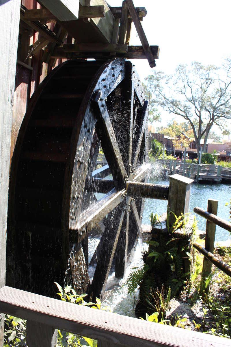Mariage thème Disney + Voyage de Noces WDW + USO + IOA + Keys + Everglades + Miami - Page 2 Img_1421